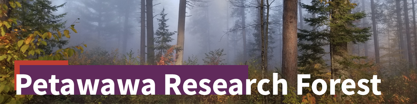 petawawa research forest banner