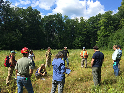 ASCC is a collaborative effort to establish a series of experimental silvicultural trials across a network of different forest ecosystems.