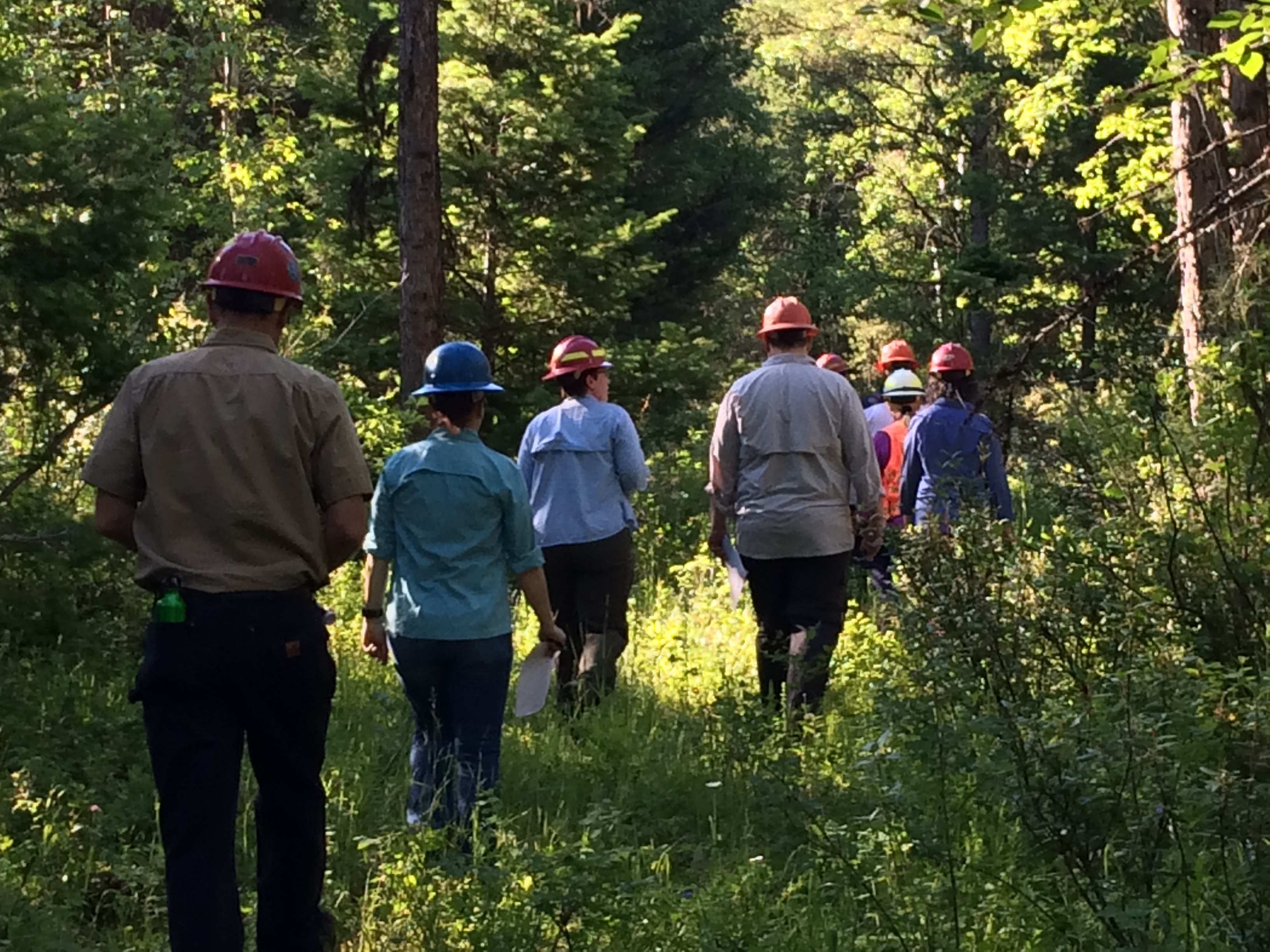 Core team exploring the Flathead NF/Coram EF Site.
