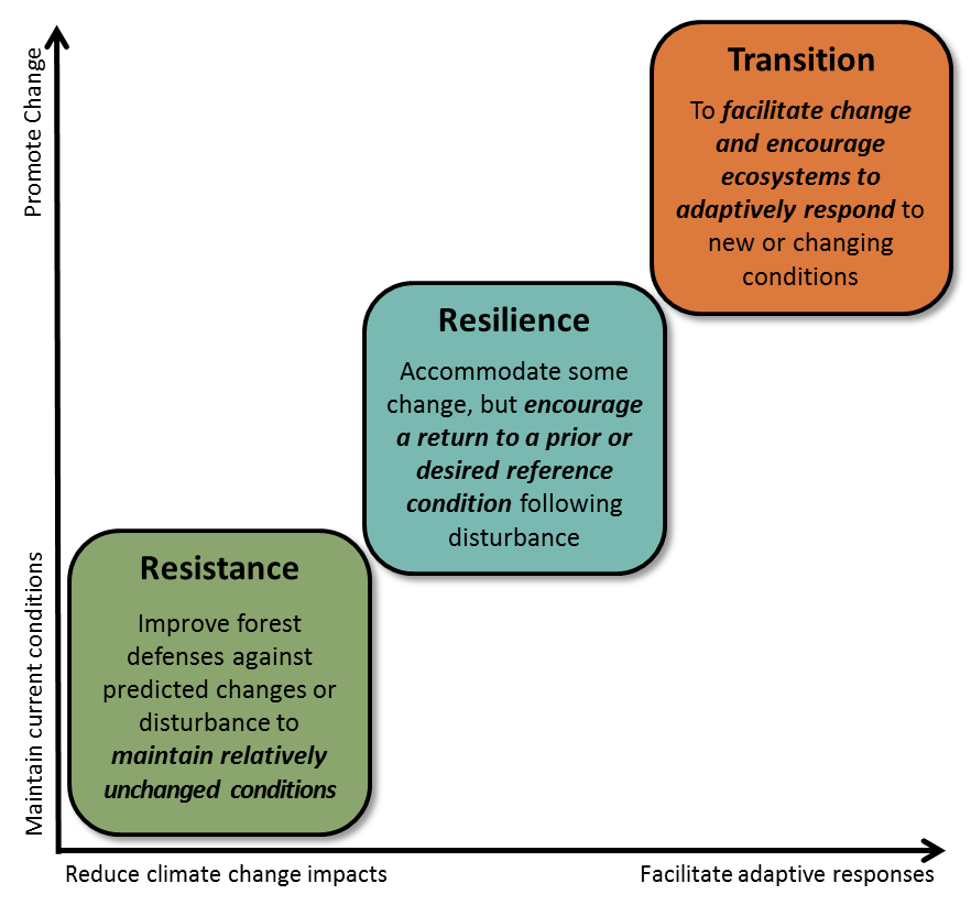 Resistance, resilience, and transition options sorted by change