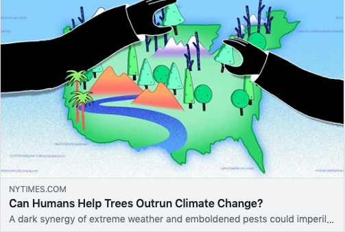 "The New York Times article ""Can Humans Help Trees Outrun Climate Change?"""
