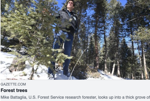 The Gazette article featuring Mike Battaglia, USFS Research Forester. Photo Credit: Jerilee Bennett, The Gazette