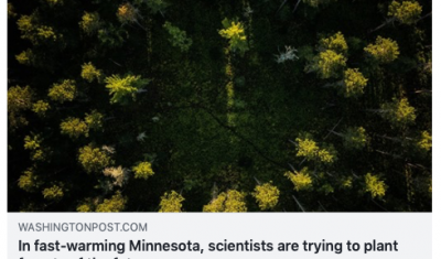 Washington Post - Scientists are trying to save Minnesota's North Woods forest from climate change