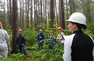 group of people wearing hard hats in woods